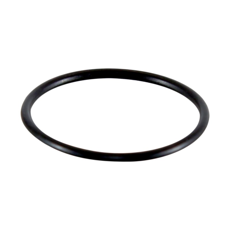 Gasket, Catch Can Window CC-GV6Z