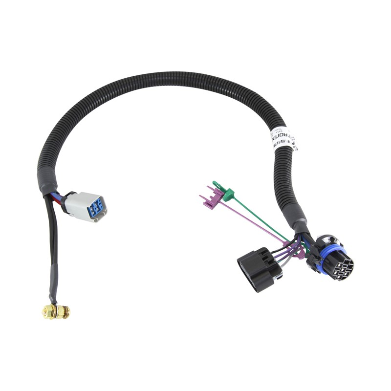 Intermediate DP Pump Harness C56